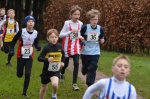 Hants Champs U11 Boys II.jpg