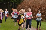 Hants Champs U11 Girls II.jpg