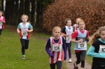Hants Champs U11 Girls III.jpg